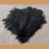 Ostrich feather, black