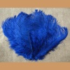 Ostrich feather,blue